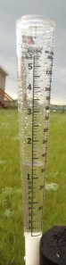 "The rain gauge recorded 1.25"" of rain in about an hour on Monday, June 15, 2009."